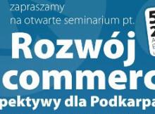 rozwoj-e-commerce-univ-rzes