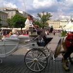 marek_moskwa-sobotni-krakow-12